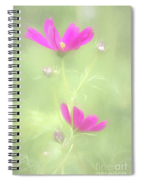 Delicate Painted Cosmos Spiral Notebook