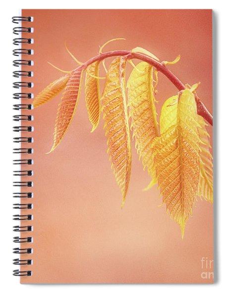 Delightful Baby Chestnut Leaves Spiral Notebook