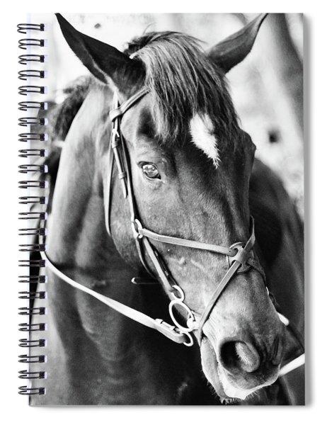 Derby I Spiral Notebook