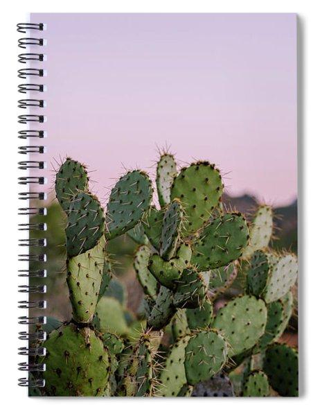 Desert Heart Spiral Notebook