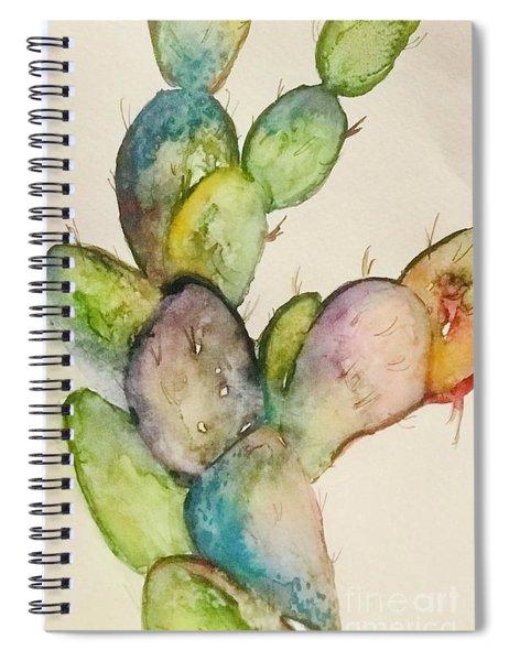 Desert Teal  Spiral Notebook