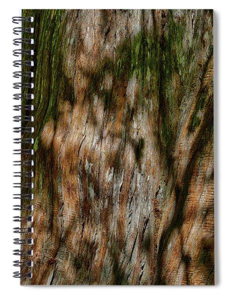 Detail Of Bark On Huge  Tree Spiral Notebook