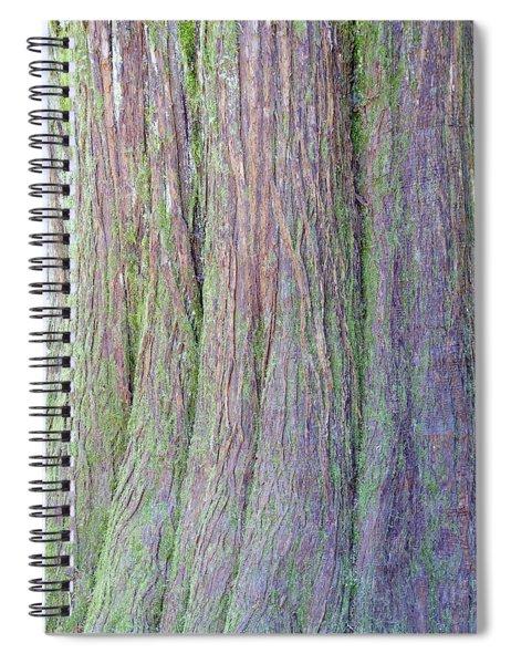 Details, Old Growth Western Redcedar Spiral Notebook