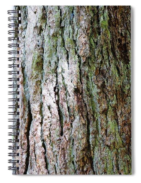 Details, Old Growth Western Redcedars Spiral Notebook