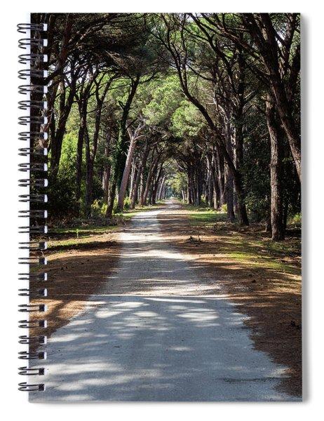 Dirt Pathway In A Mediterranean Pine Forest Spiral Notebook