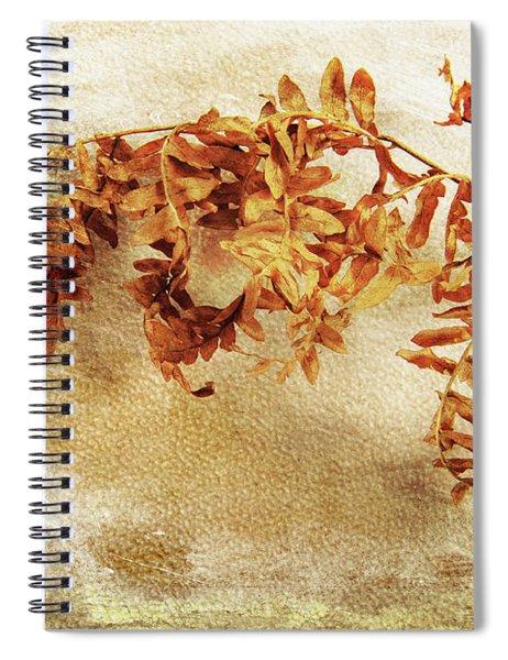 Disorderly Order Spiral Notebook