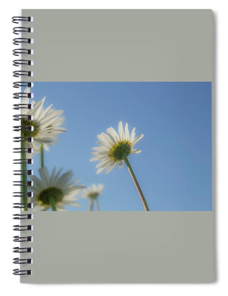 Distracted Daisies Spiral Notebook