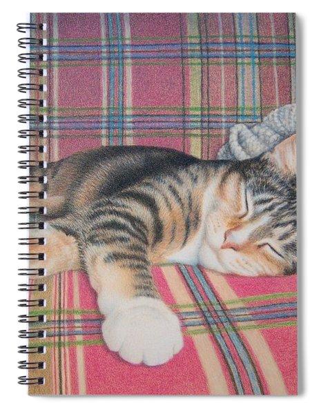 Do Not Disturb Spiral Notebook