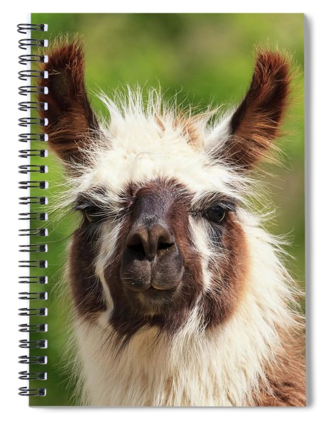 Don't Hate Me Because I'm Beautiful Spiral Notebook