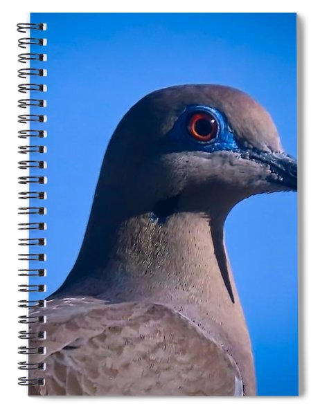 Don't It Make My Brown Eyes Blue Spiral Notebook