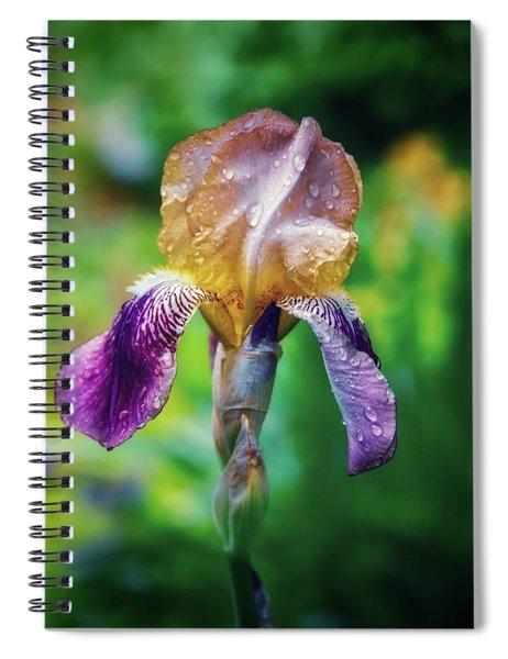 Doris  Spiral Notebook
