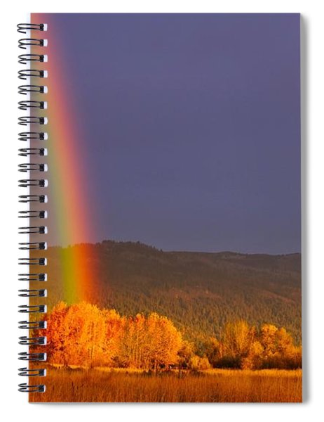 Double Gold Spiral Notebook