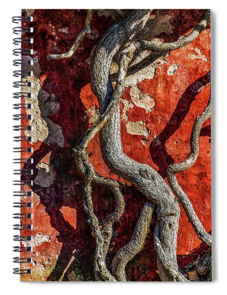 Double March Spiral Notebook
