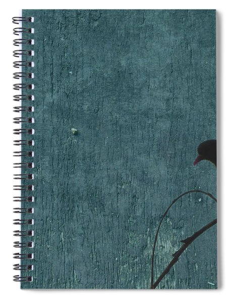 Dove In Blue Spiral Notebook