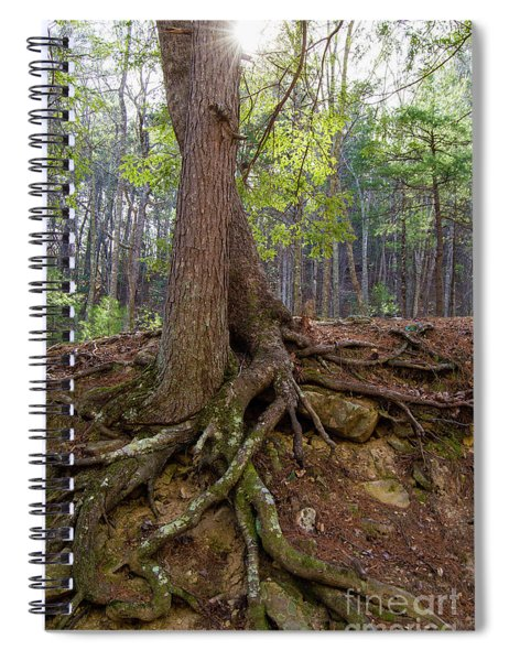 Down In Her Roots Spiral Notebook