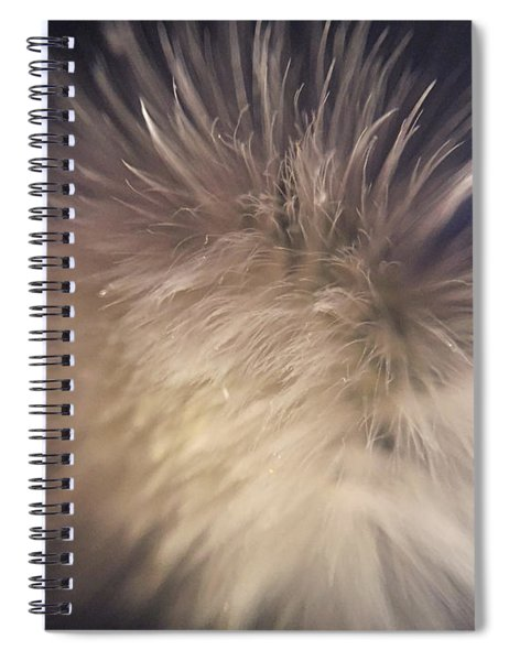 Down The Middle Spiral Notebook