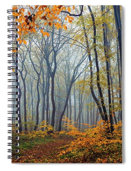 Dream Forest Spiral Notebook