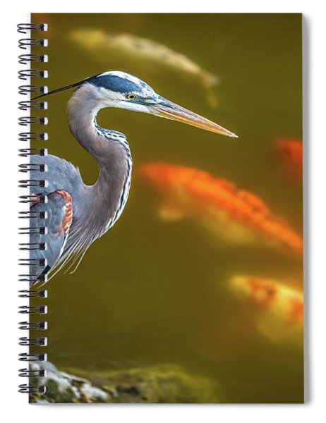Dreaming Tricolor Heron Spiral Notebook