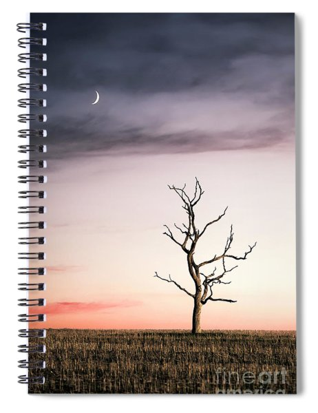 Dreams Of The Dead Tree Spiral Notebook