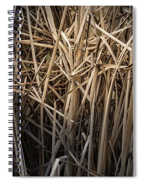 Dried Wild Grass II Spiral Notebook