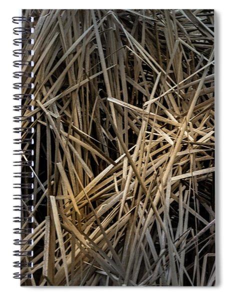 Dried Wild Grass IIi Spiral Notebook