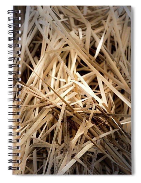 Dried Wild Grass I Spiral Notebook