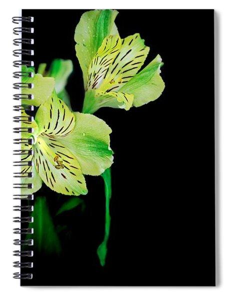 Drifting Peruvian Lilies Spiral Notebook