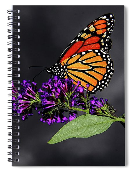 Drink Deeply Of This Moment Spiral Notebook