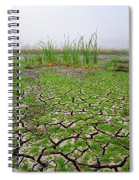 Dry Duck Pond Spiral Notebook