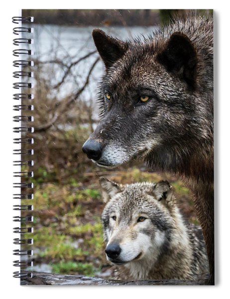 Dual Wolves Spiral Notebook