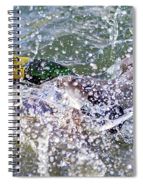 Duck Fight Spiral Notebook