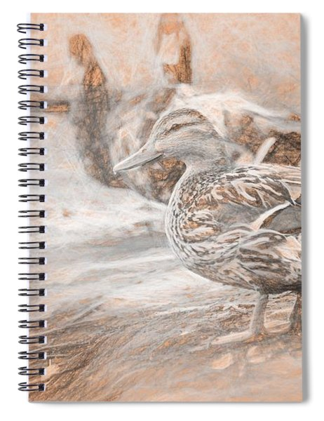 Ducks On Shore Da Vinci Spiral Notebook