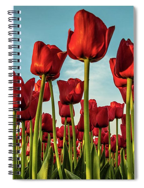 Spiral Notebook featuring the photograph Dutch Red Tulip Field. by Anjo Ten Kate