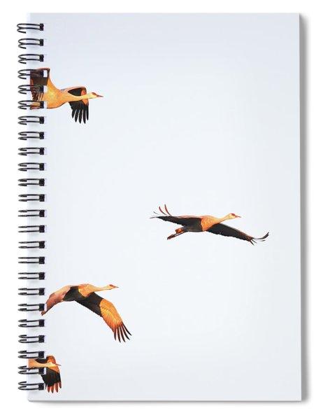 Early Morning Flight Spiral Notebook