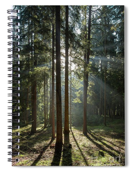 Early Morning In Coniferous Forest Spiral Notebook