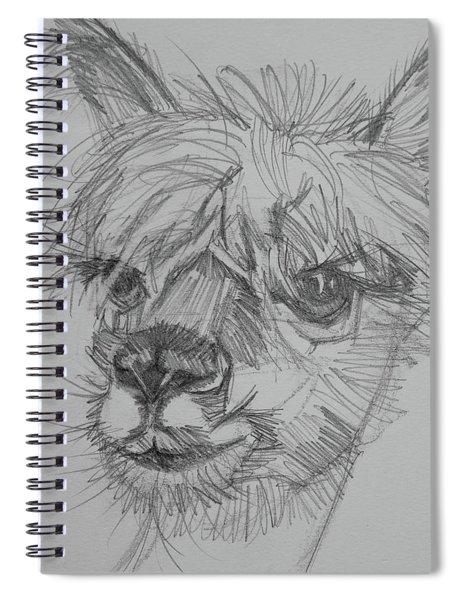 Easy Breezy Beautiful Sketch Spiral Notebook by Jani Freimann