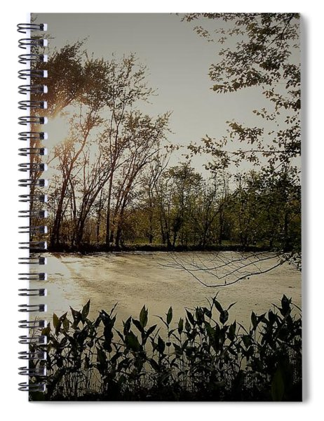 Echoes In Time Spiral Notebook