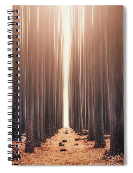 Echoes Rising Spiral Notebook