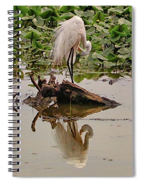 Egret 4 Spiral Notebook