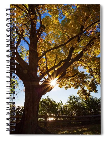 Electric Forest Spiral Notebook