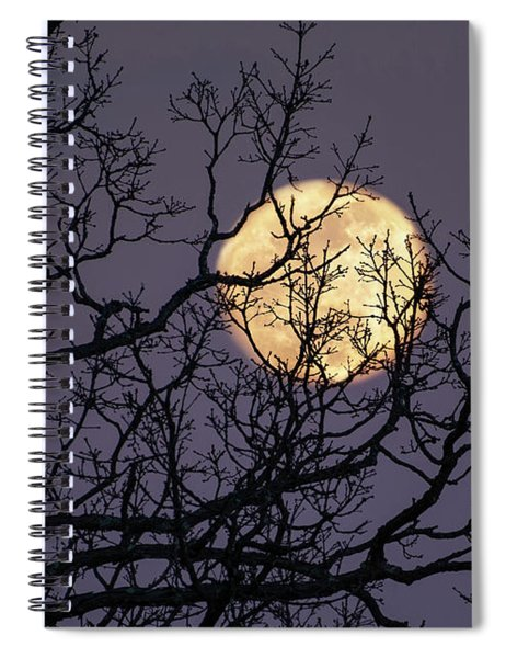 Embracing The Moon Spiral Notebook