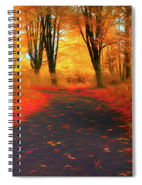 Emmaus Community Park Path - Colors Of Fall Spiral Notebook