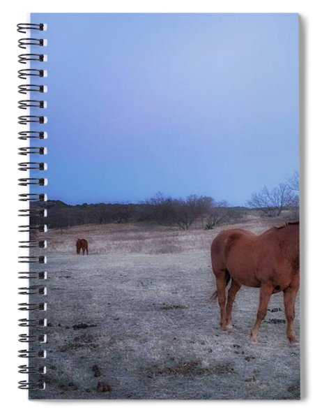 Enduring Happiness Spiral Notebook