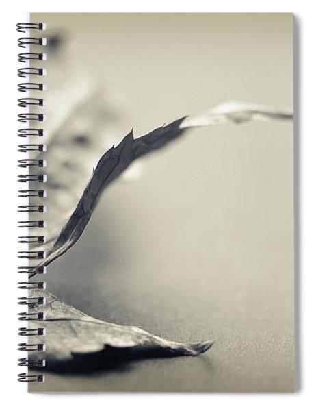 Entranced Spiral Notebook
