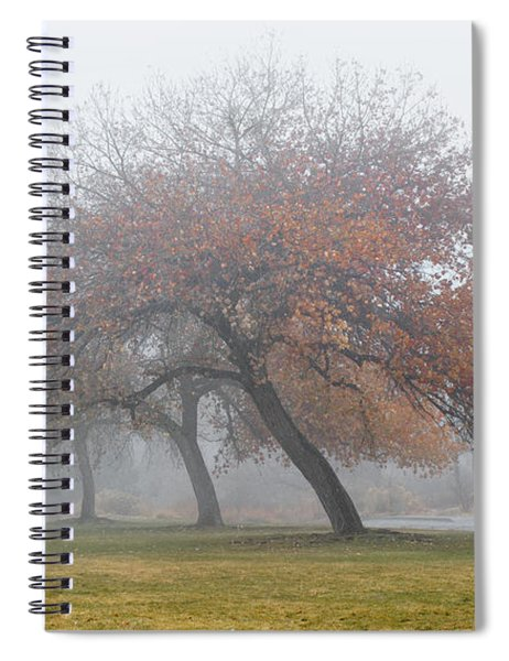 Enveloping Fog Spiral Notebook