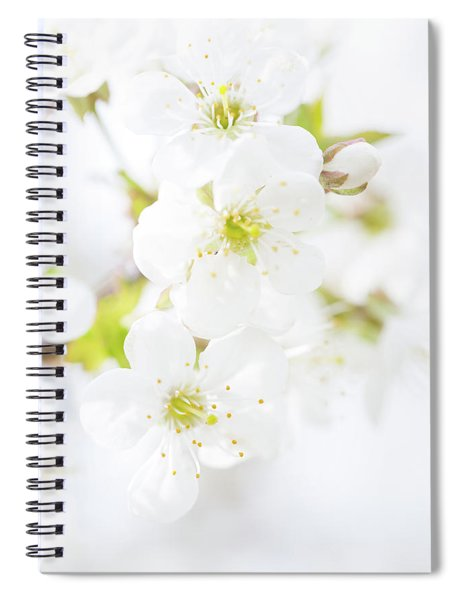 Spiral Notebook featuring the photograph Ethereal Blossoms by Emily Johnson