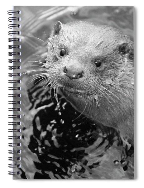 European Otter Spiral Notebook