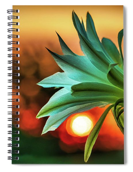Even Those That Bloom In Darkness Can Find The Light Spiral Notebook