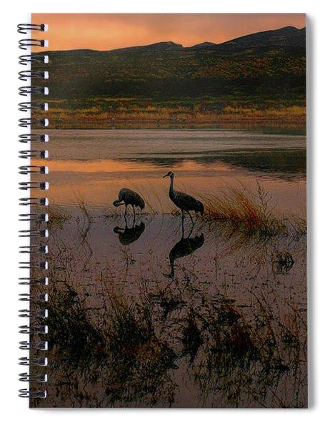 Evening Duet Spiral Notebook