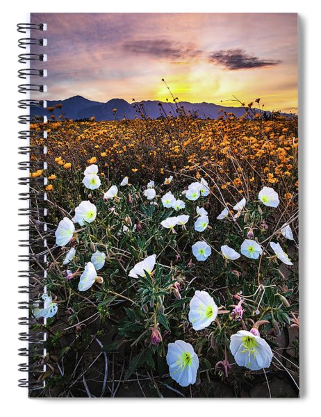 Evening With Primroses Spiral Notebook
